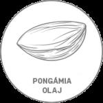 pongamia