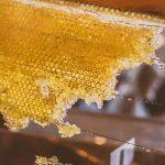 Sárga méhviasz – arany a bőrnek Mostanság, amikor egyre több mesterséges anyag vesz minket körül, épp ideje azt mondanunk, hogy elég, és szépen visszatérni a jól bevált dolgokhoz. Az immunrendszer ideális működése abban is rejlik, hogy minél több természetes anyaggal támogassuk. A problémás bőr kezelésére például itt van nekünk a méhviasz, amit egyébként az ember már ősidők óta használt különféle célból. De ahelyett, hogy belemerülnénk az antropológiába, inkább térjünk a tárgyra!
