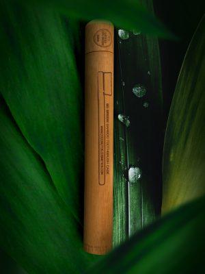 Coconutoilcosmetics Bambusz Fogkefe Tok